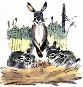 Сказка про храброго Зайца — длинные уши, косые глаза, короткий хвост читать онлайн