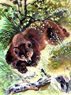 Сказка про Комара Комаровича — длинный нос и про мохнатого Мишу — короткий хвост читать онлайн