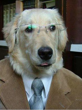Учёная собака читать онлайн