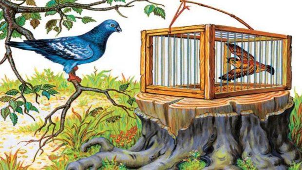 Чиж и Голубь читать онлайн