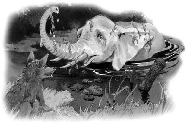 Шакалы и слон читать онлайн