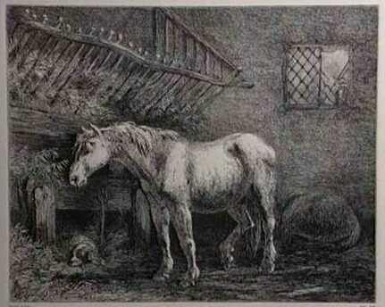 Старый конь читать онлайн