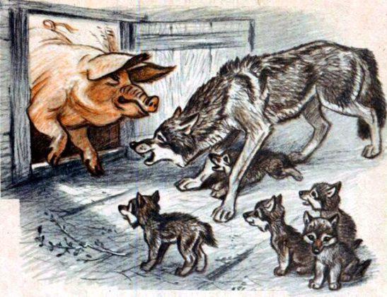 Волчица и свинья читать онлайн