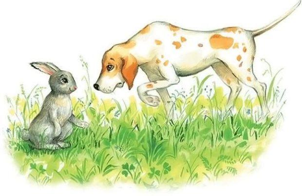 Заяц и гончая собака читать онлайн