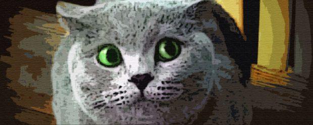 Озорной кот читать онлайн