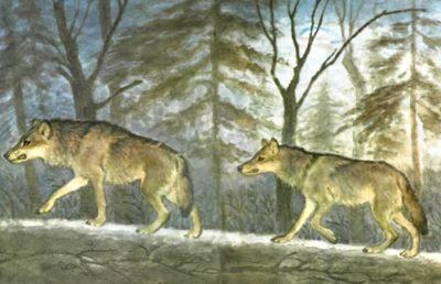 Волк и волчица читать онлайн